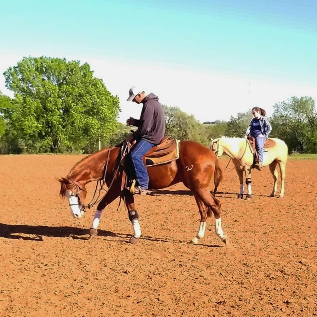 Philosophy of Reining Horse Training